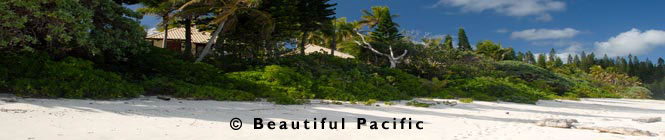 picture of  Nengone Village Resort, Mare, Loyalty Islands